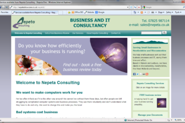 Nepeta Consulting website front page