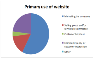 What do businesses use their website for?