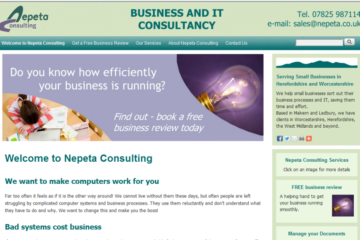 Old design for Nepeta Consulting website
