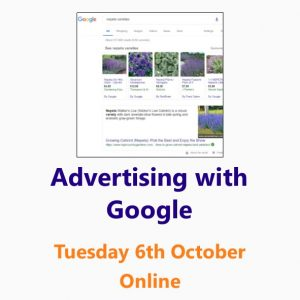 Advertising with Google: a Small Business Clinic workshop on Google Ads and Google Shopping 6th October online